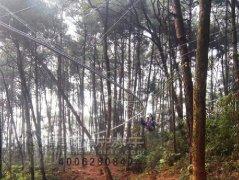 叢林(lin)軌道滑索飛索在廣西景區