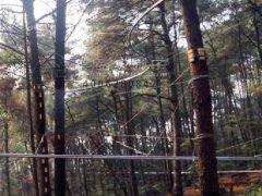 叢林(lin)軌道飛索滑索在廣西景區
